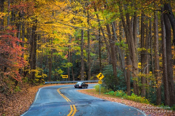 Windy Fall Road by Chip Bunnell Photography