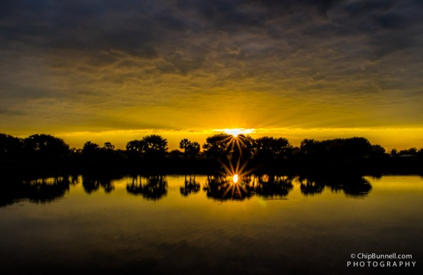 Wakodahatchee Sunrise by Chip Bunnell Photography