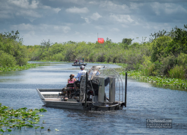 Airboat in the Everglades by Chip Bunnell Photography
